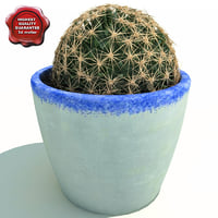 cactus ferocactus acanthodes 3d lwo