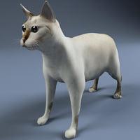 cat modelled 3d 3ds