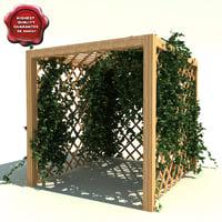 Garden Pergola with ivy