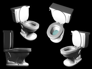 plain toilet 3d obj