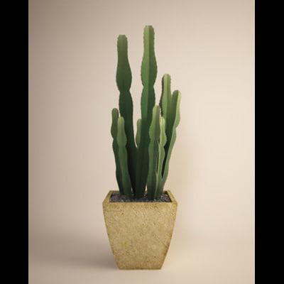 3ds max planter cactus