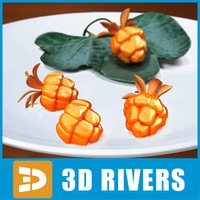 cloudberry berries 3d obj