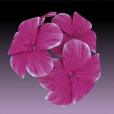 flower 3d max