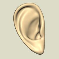 set ears 3d model