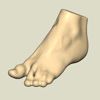 3d model set feet