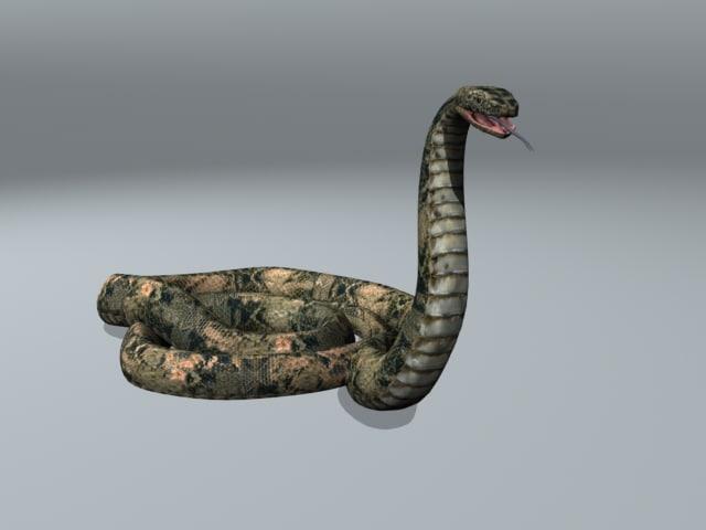 3d python animation