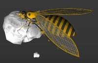 3d model wasph