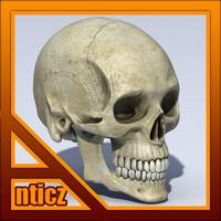 Skull Standard