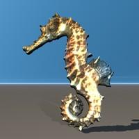 sea horse seahorse 3d model