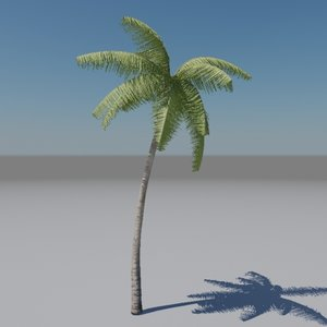 palm tree animation max free