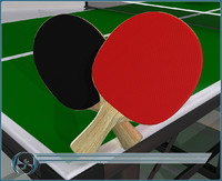 3d 3ds table tennis paddles ping pong