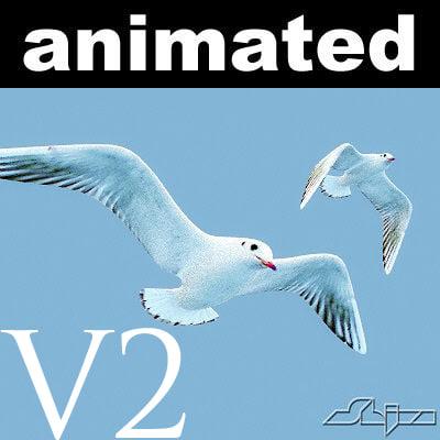 jhonatan livingstone v2 flying seagull 3d model