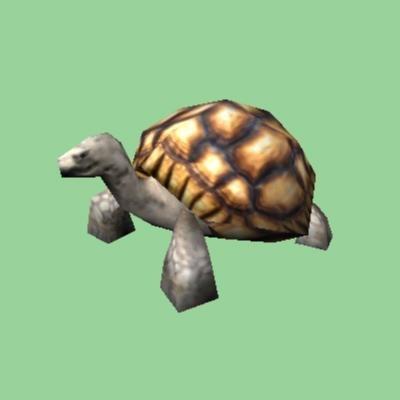 3d turtle tortoise