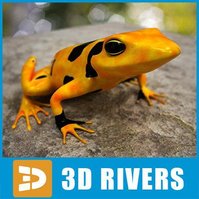atelopus frog 3d max