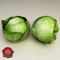 3d model cabbage modelled