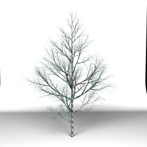 tree modo x