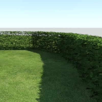 3ds max highpoly hedge