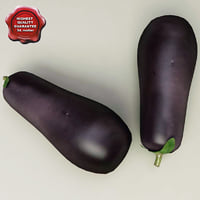 max eggplant modelled