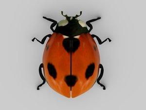 obj ladybird lady