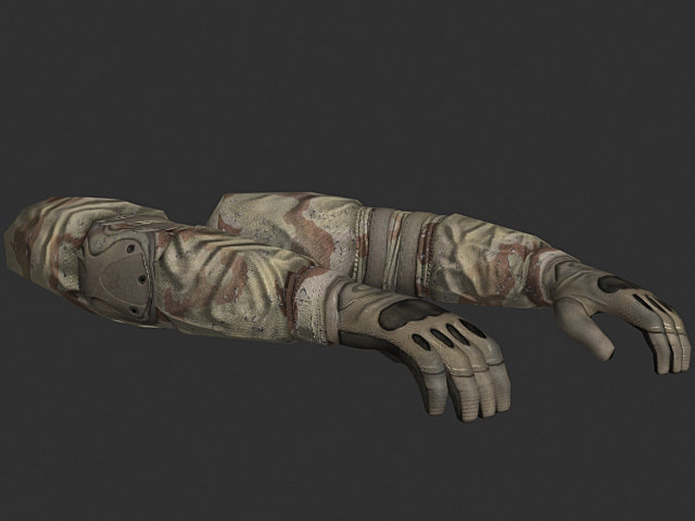 person arms 3d max