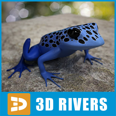 poison dart frog 3d max