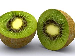 3d model kiwi
