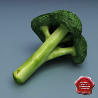 3ds broccoli modelled