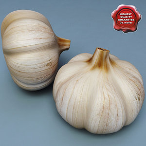 3d model of garlic modelled