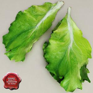 3d model lettuce modelled