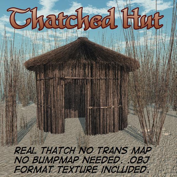 maya thatched hut