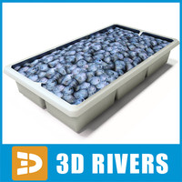 3d box blueberries