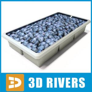 3d box blueberries
