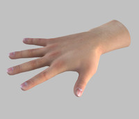 3d male hand