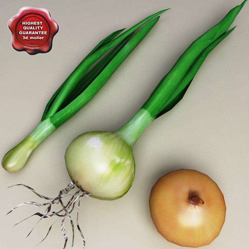 3d model onions set modelled