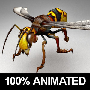 3ds max rigged wasp animations