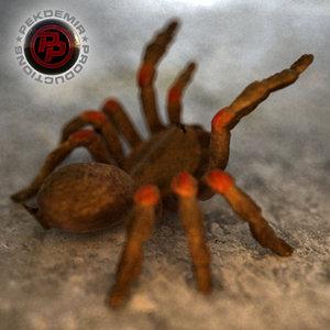 spider tarantula 3d max