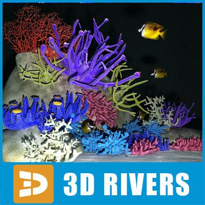 set corals 01 3d model