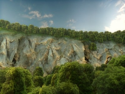 Landscape forest