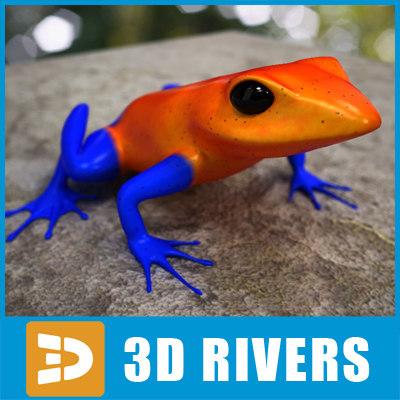 3d poison dart frog model