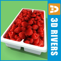 3d model box raspberries