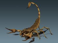 scorpion.max