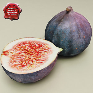 figs modelled 3d 3ds