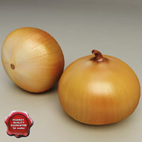 3d model of onion modelled