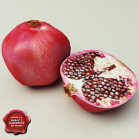 3ds max pomegranate modelled