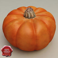 pumpkin modelled 3d 3ds