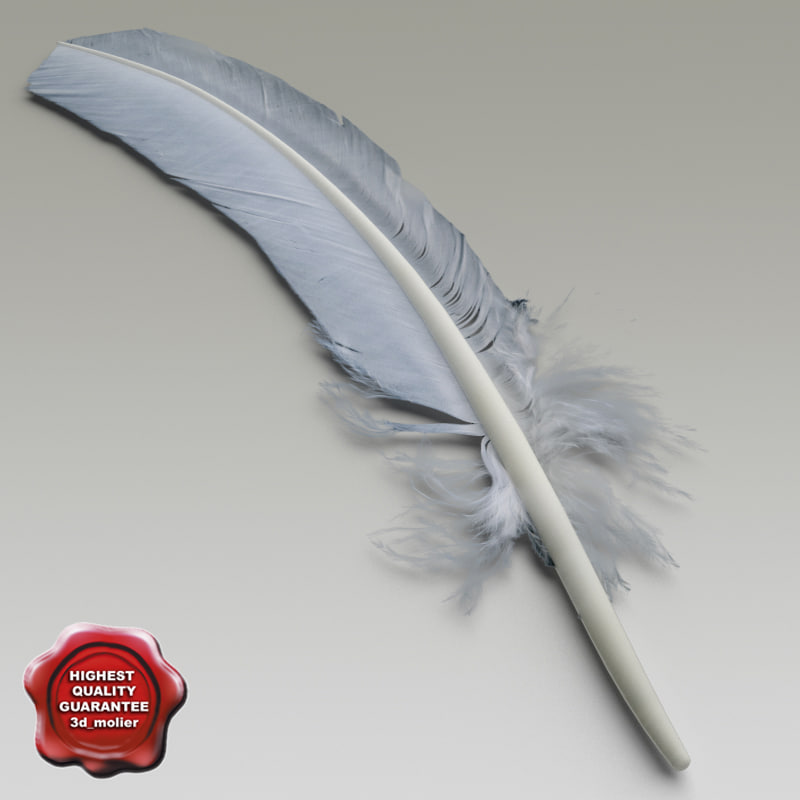 bird feather v2 3d model