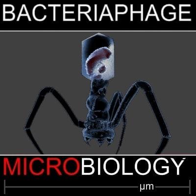 3d virus science