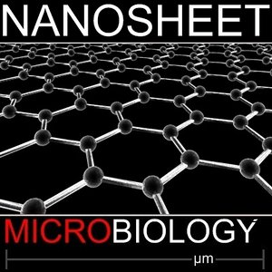 carbon nanosheets 3d model