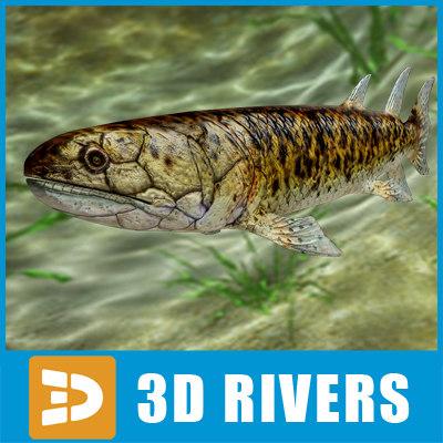 maya eusthenopteron fish evolution