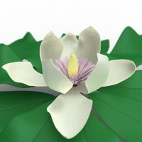 obj magnolia flower